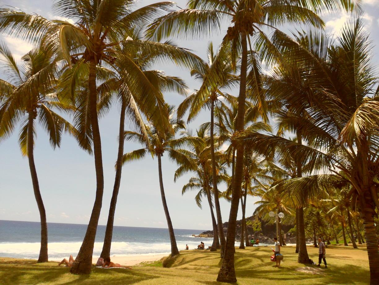 Réunion - Inseln zum Träumen