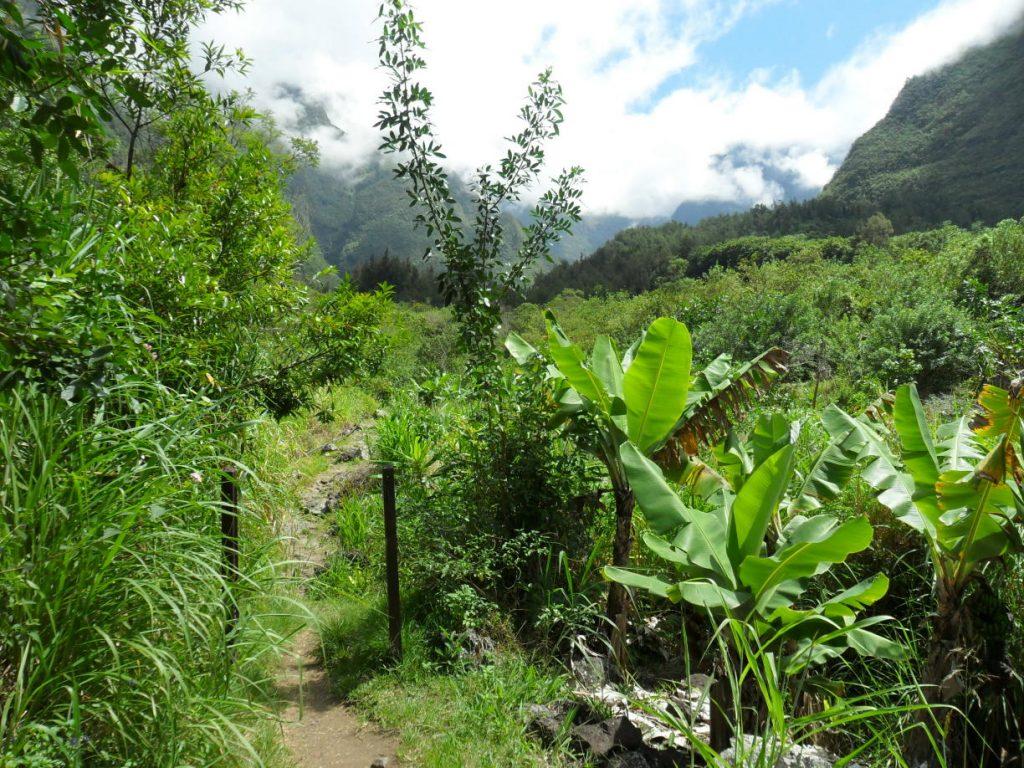 Wanderung ab Grand Galet auf der Insel Réunion