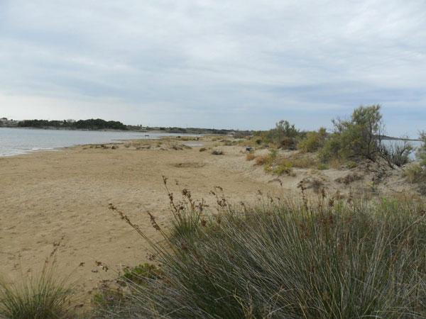 Strand in Nin