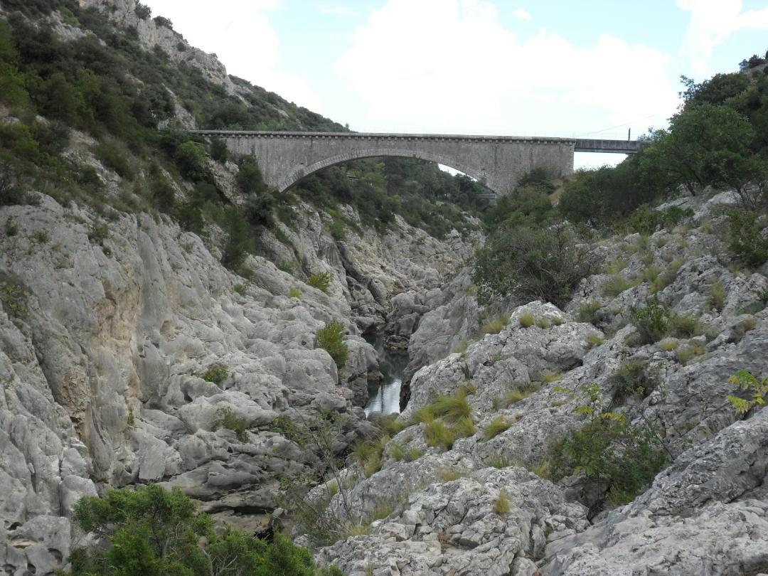 Hérault-Schlucht