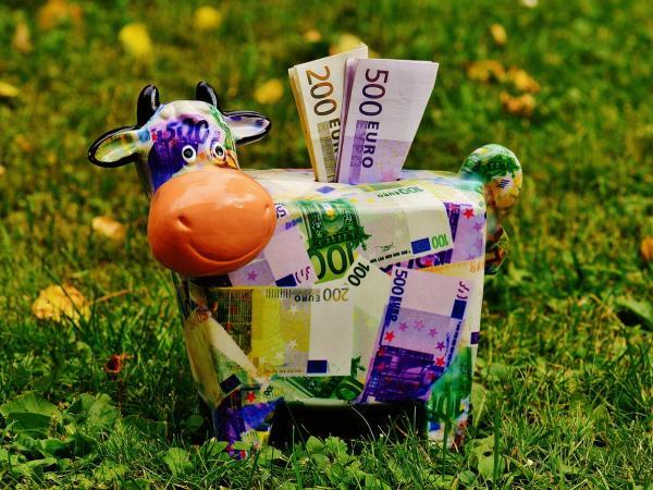 Geld verdienen und Reisen