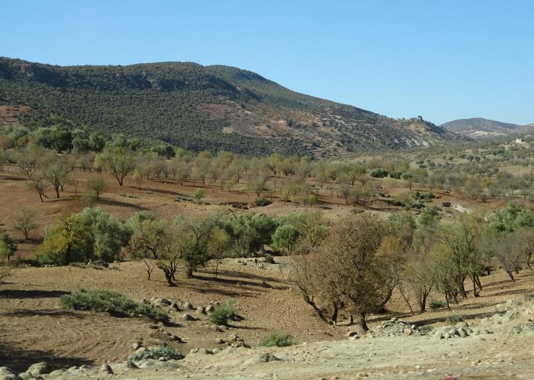 Anfahrt Ouzoud Wasserfälle