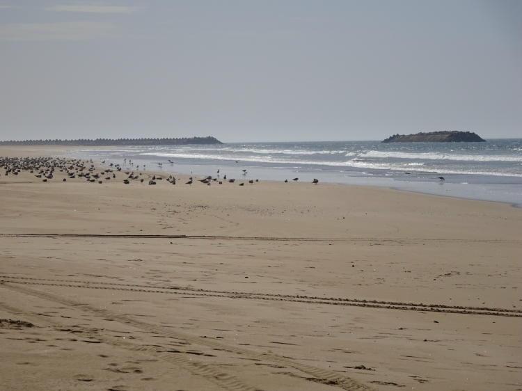 Strand Agadir