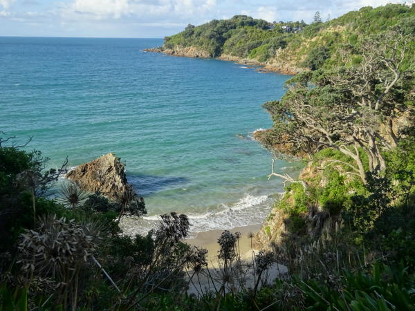 Te Ara Hura Walkway zur Little Oneroa Bay