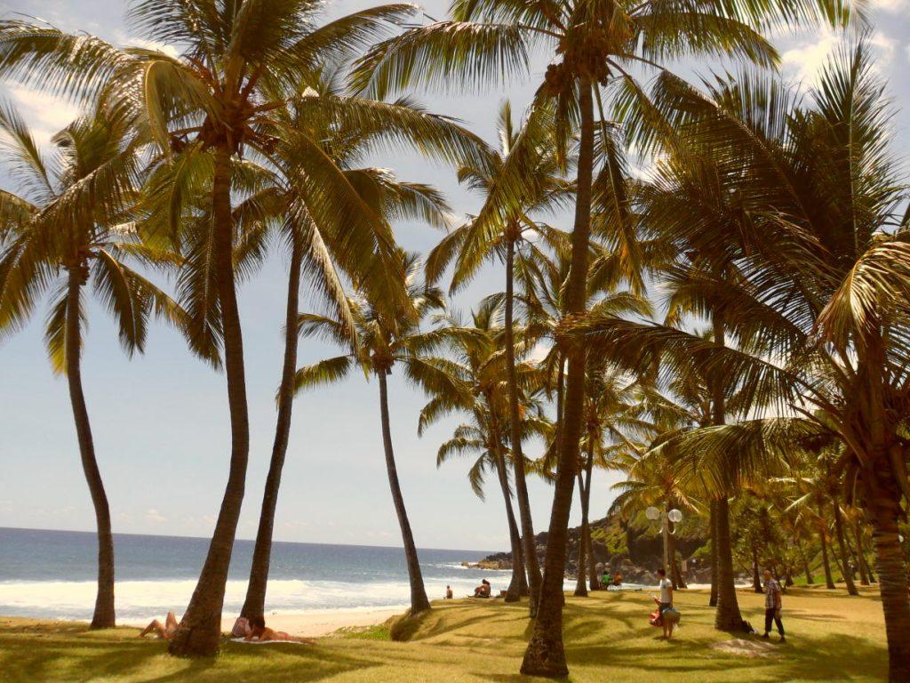 Réunion - Reiseblog Inseln zum Träumen