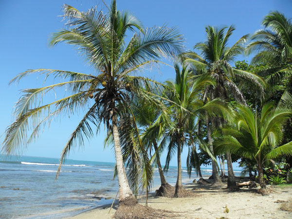 Puerto Viejo Karibik