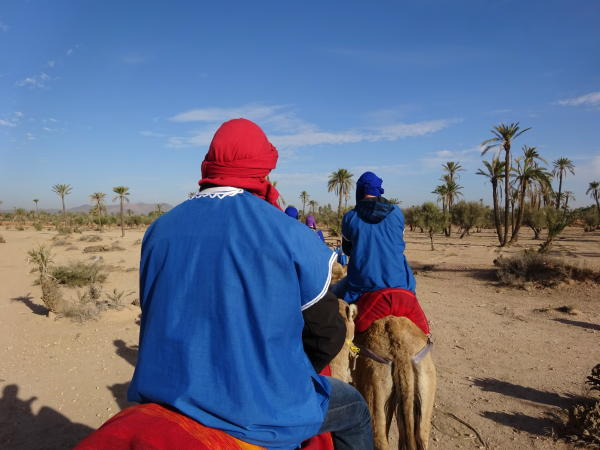 Kamelritt Marokko
