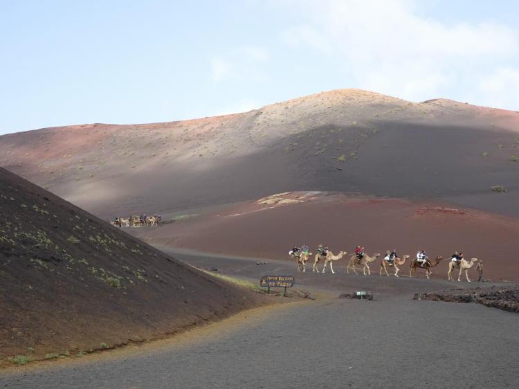Nationalpark Timanfaya - Kamelritt