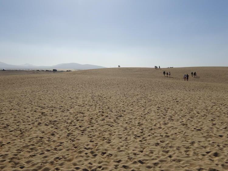 Dünen von Corralejo