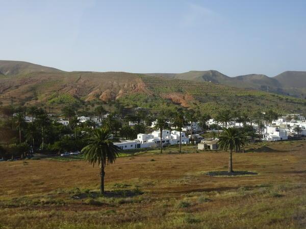 Haria & das Tal der 1000 Palmen