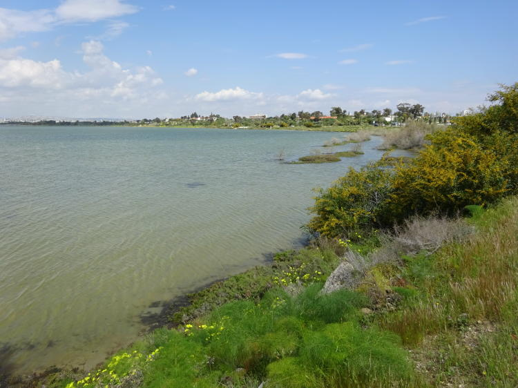 Wanderung um den Salzsee bei Larnaka