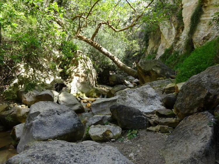 Wanderweg Avakas-Schlucht