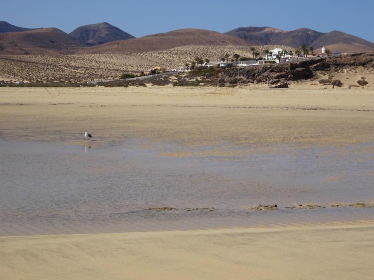 Lagunenlandschaft - Risco del Paso
