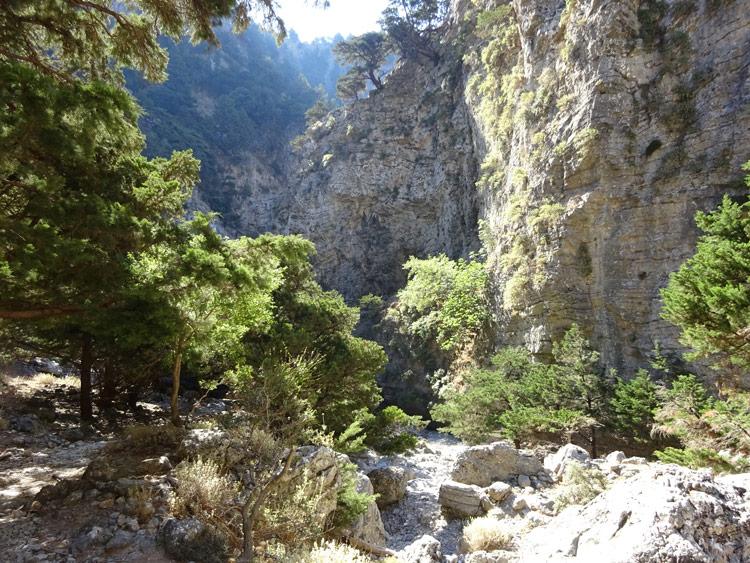 Imbros-Schlucht Kreta