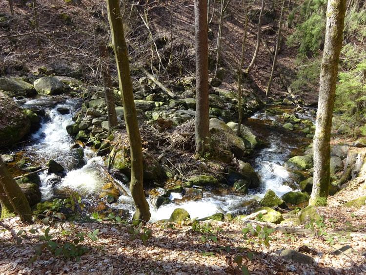 Ilse im Harz