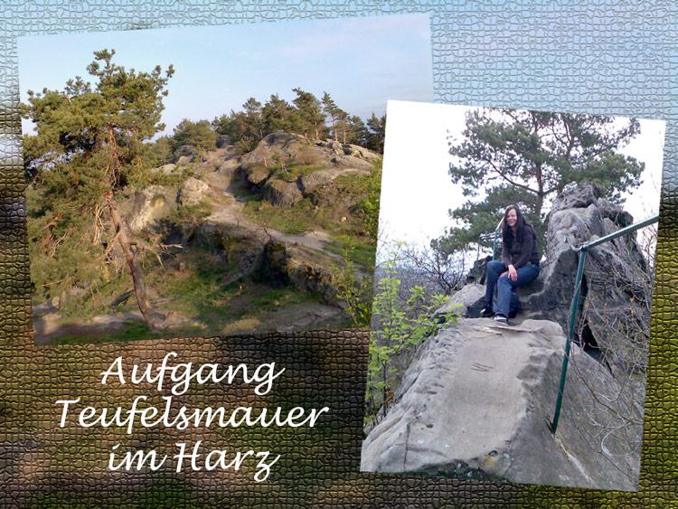 Teufelsmauer im Harz